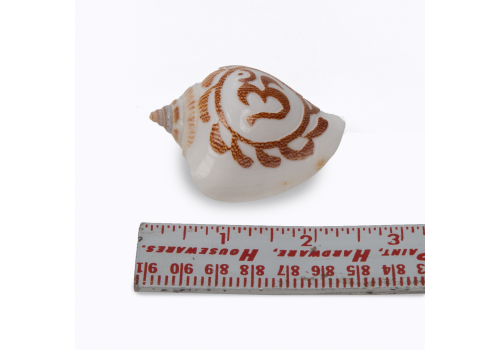 Small Conch Shell with OM design