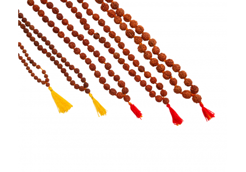 Rudraksha Prayer Mala with 12 mm and 5 faced beads
